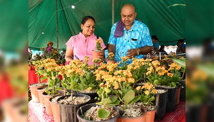 Love For Flowers Leads To Livelihood